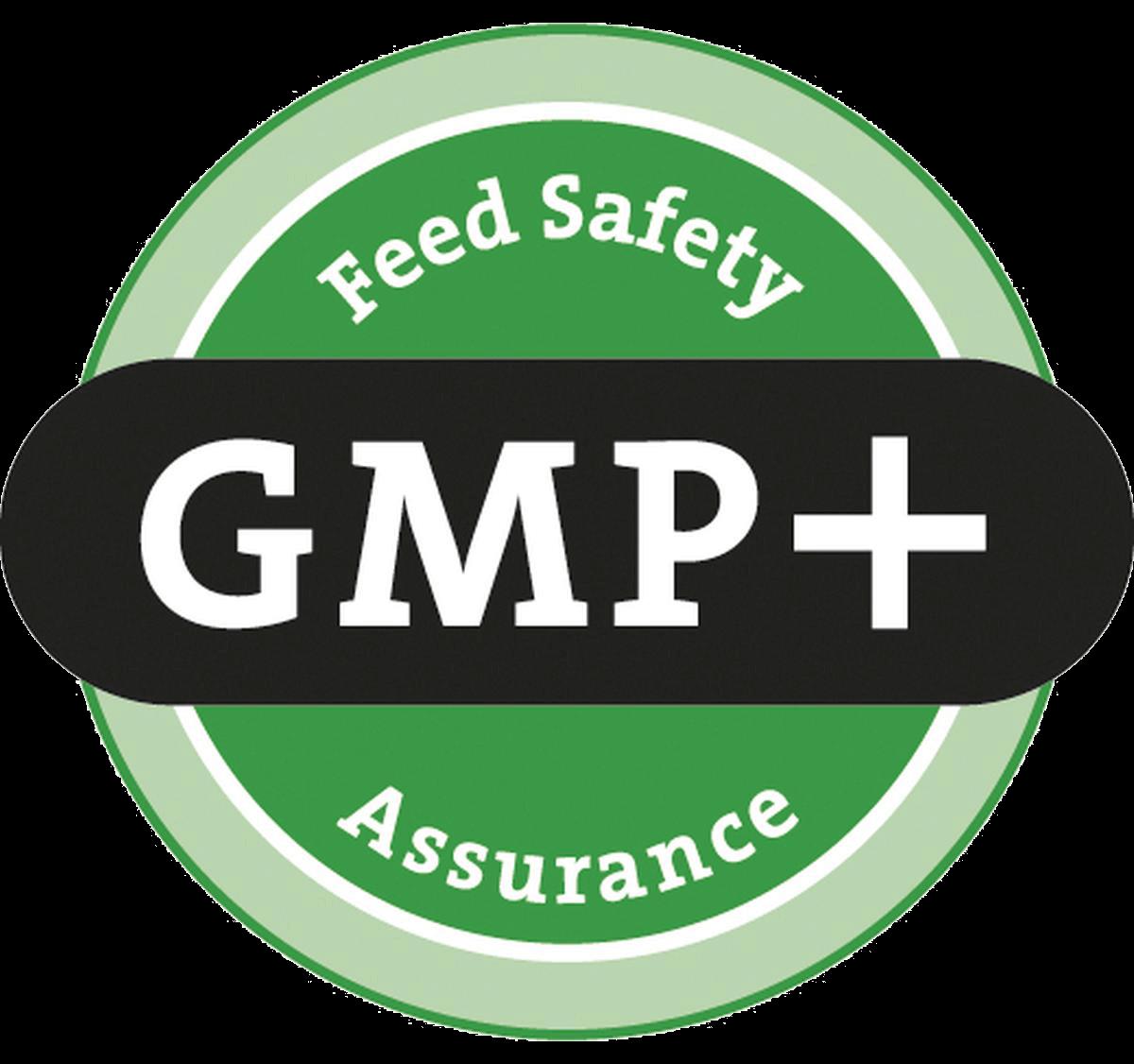 gmp__logo_big